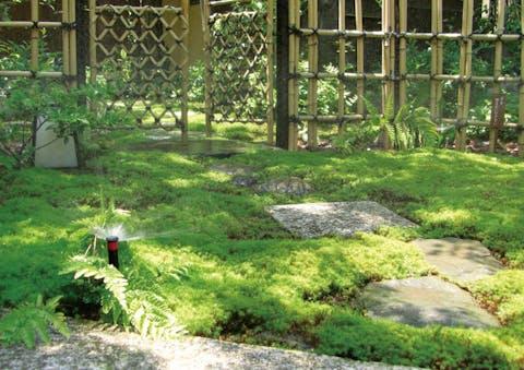 【個人邸の施工例】苔が広がる由緒正しき日本庭園への自動散水